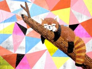 Rød panda maleri