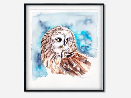 Uglen Ullo – Akvarel maleri af lapugle