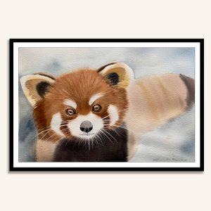 Rød panda akvarel maleri af Kamilla Ruus