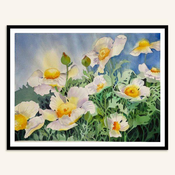 Hvide valmuer maleri af Kamilla Ruus